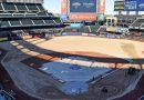 Photo: Citi Field Gets New Grass